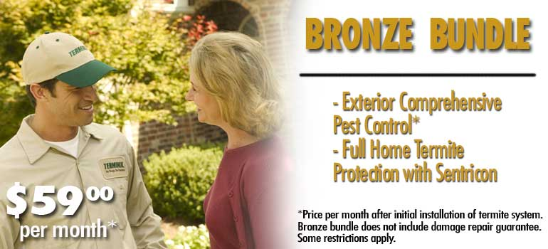 bronze-bundle